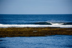 Another Surf break - Surflogic trips